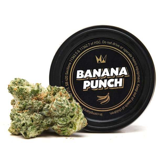 Buy Banana Punch by West Coast Cure