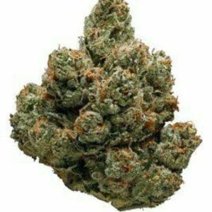 Black Cherry Pie Marijuana Strain