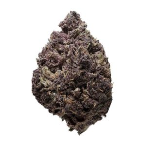 Purple Haze Marijuana Strain