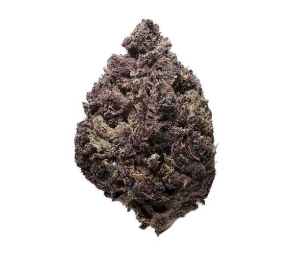 Purple Haze Marijuana Strain