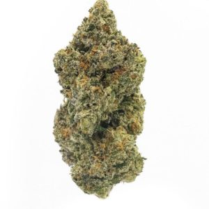 Northern Lights Marijuana Strain