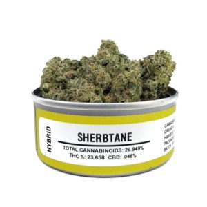 Sherbtane Space Monkey Meds